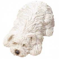 WHITE YORKSHIRE TERRIER SNOOZER