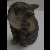 TABBY CAT SILVER