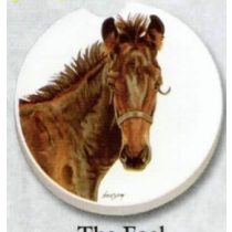 THE FOAL CAR COASTER