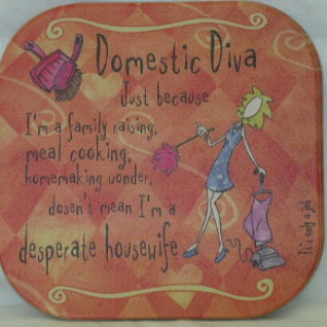 DOMESTIC DIVA COASTER